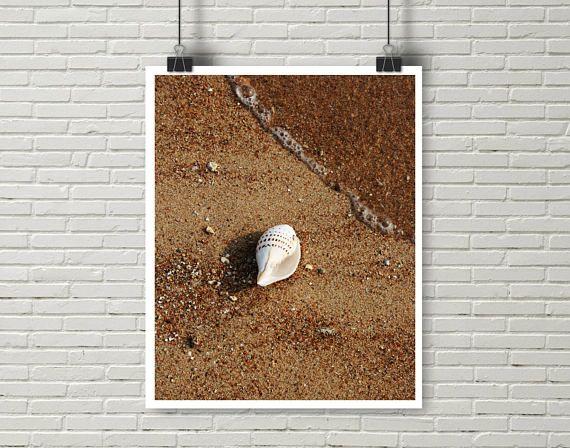 Shell Print, Beach Photo, Coral Print, Wave Print, Ocean Print, Tropical Poster, Ocean Beach Art, Beach Sand, Ocean wall decor, Sea decor This is an Instant Digital Download You can print in size : 12x16 (30X41 cm), 11x14 ( 28X35 cm) or 8x10 (20X26 cm) Format: JPG Resolution: 300 dpi
