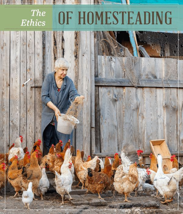 The Ethics Of Homesteading