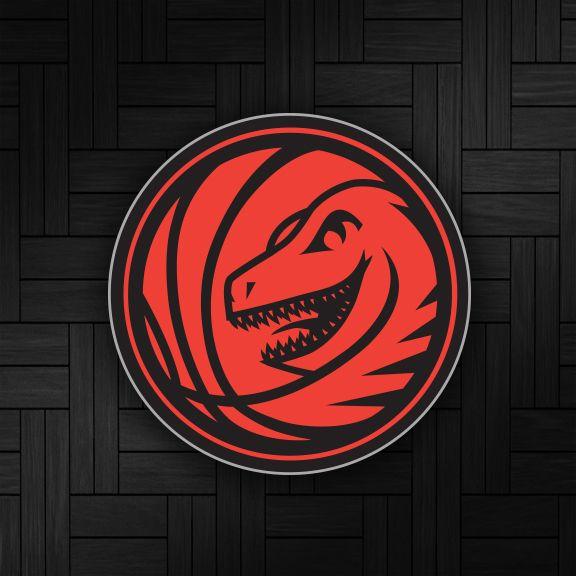 Toronto Raptors Concept