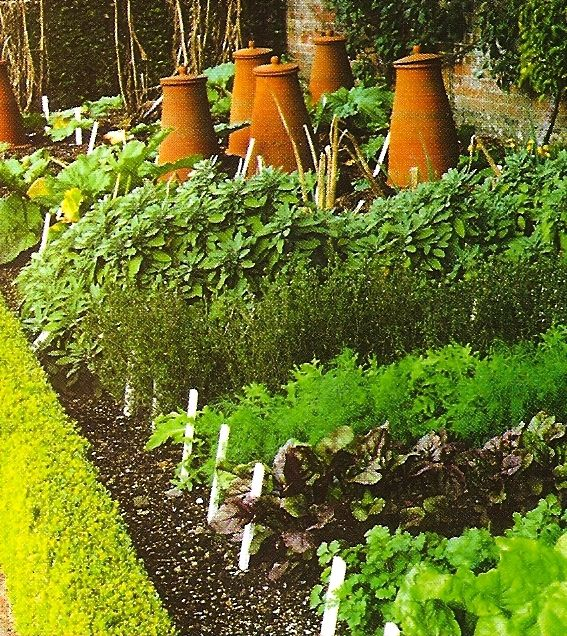 Back Yard Potager: 671 Best Images About Beautiful Vegetable Gardens On Pinterest
