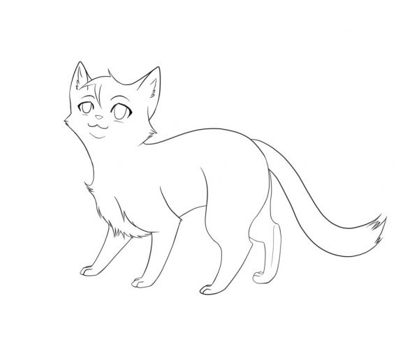 warrior cat outline drawing 1oxd4png 600500