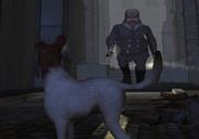 3D Macera Oyunu olan 3D Köpek Macerası oyununu sizlerde 3D Oyuncu'yu ziyaret ederek hemen oynamaya başlayın.  http://www.3doyuncu.com/3d-kopek-macerasi/