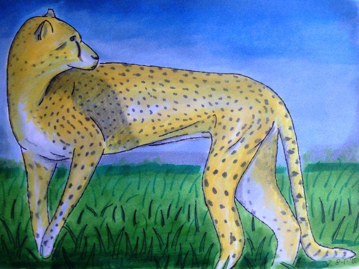 Cheeta, fineliner en viltstift op papier