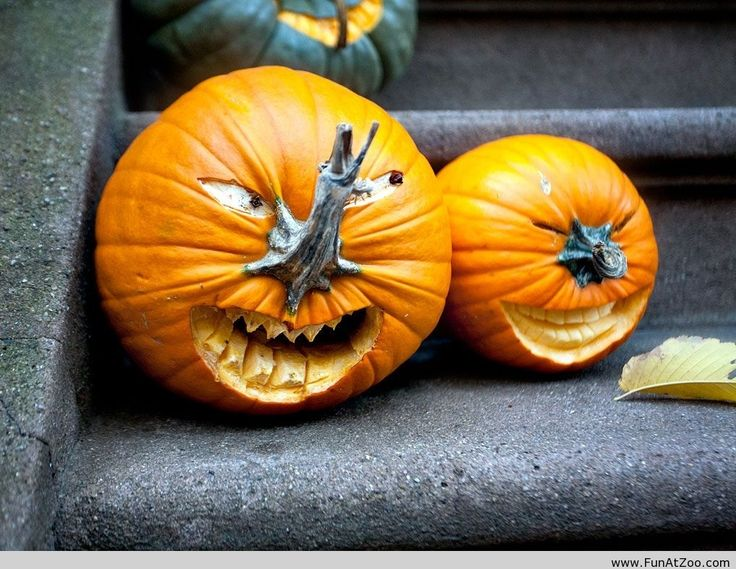 take out your carving tools and get your house halloween ready weve got 10 awesome pumpkin carving ideas from famous paintings to all star chefs - Pumpkins Decorations