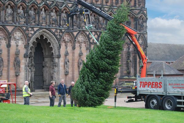 Our parent company Tippers delivering Lichfield Cathedral their Christmas tree. Can't wait to see it decorated!
