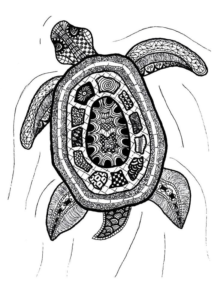 zentangle art zentangle turtle print by printfox on etsy zentangle ideas pinterest. Black Bedroom Furniture Sets. Home Design Ideas