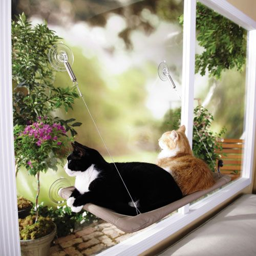 Sunny seat window mounted cat bed from great companions for Kitty corner bed ideas