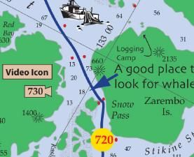 The Alaska Cruise Handbook: A Mile by Mile Guide. This ought to be useful for this summer!