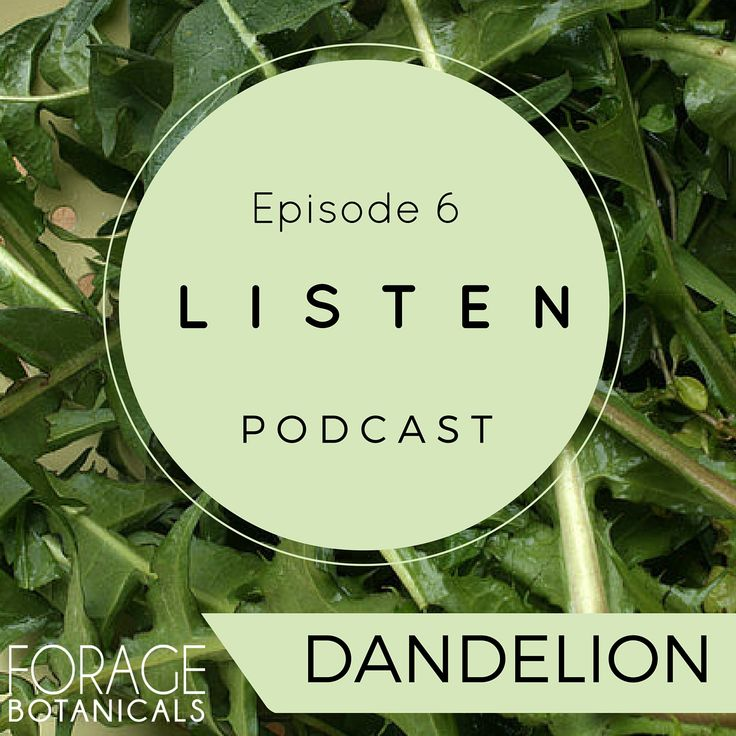 Sorry our link didn't work the other day. #Dandelion podcast now out with Fiona Morris