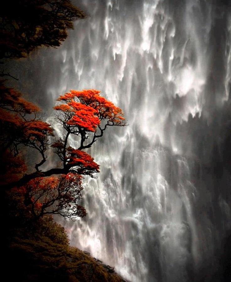 Devil's Punch Bowl Falls, Arthur's Pass - South Island, New Zealand