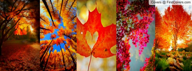 Fall Cover Facebook Covers Page 2