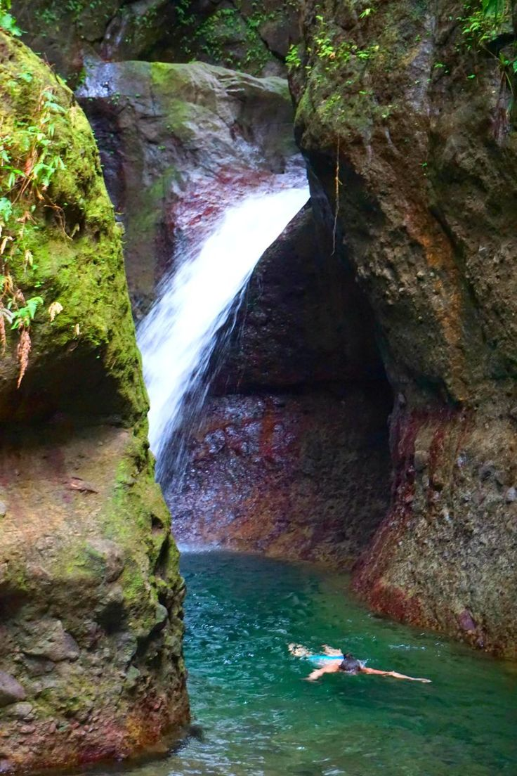 Swimming in a waterfall pool on Dominica was nothing short of a magical experience.