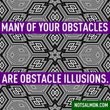 Obstacle illusions - Karen Salmansohn