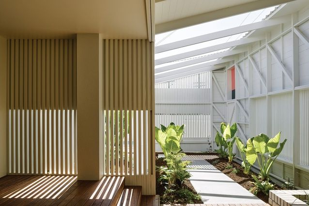 """Beachy graphics: Burleigh Street House. Behind the front facade is a pathway or """"garden room"""" lined with greenery and open to the sky."""
