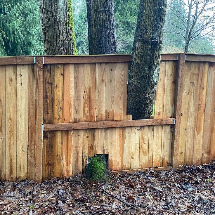 """Common Concerns HI on Instagram """"If good fences make good"""
