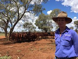 Manage grazing right to tap into high cattle performance http://farmproperty.com.au/news/68-manage-grazing-right-to-tap-into-high-cattle-performance #Cattle #AustralianFarms #FarmNews