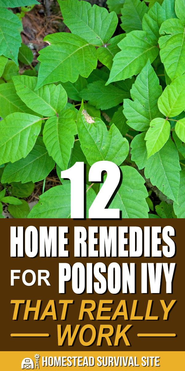 How To Get Poison Ivy Oil Out Of Clothes