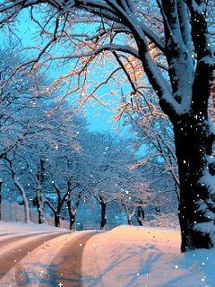 Snow on the Avenue