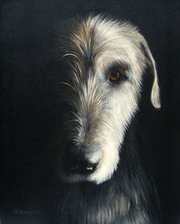 Dogs in Art at the StockBridge Gallery -  Limited edition giclee print of Sentinel by Nina Harvey, SOLD (http://www.dogsinart.com/products/-Limited-edition-giclee-print-of-Sentinel-by-Nina-Harvey.html)