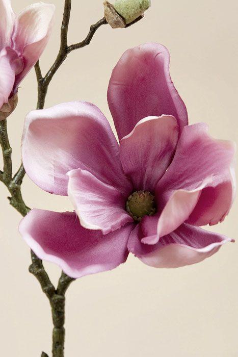 20″ magnolia spray rose