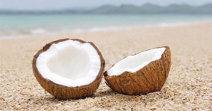 Свежий кокос Ученые утверждают, что кокосовая пальма – одно из самых древних растений Земли, сохранившихся до наших дней. Высота дерева достигает 25 метров, листья длиной до 4 метро...