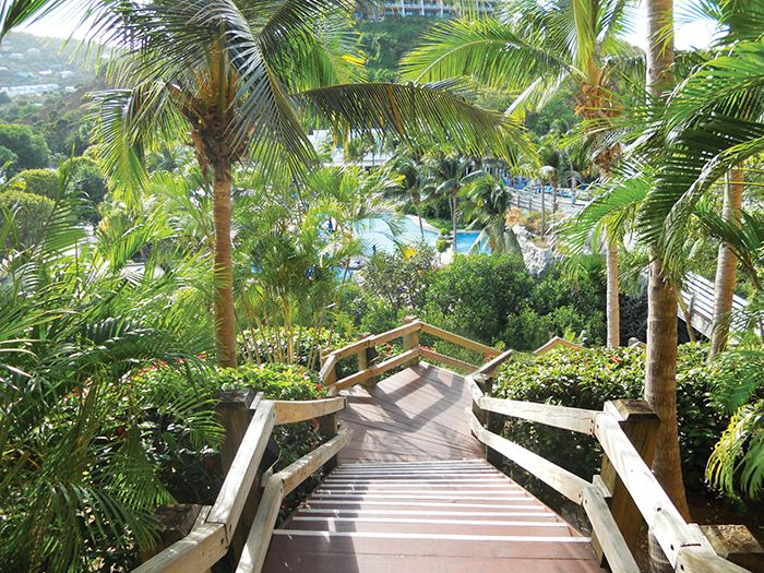 Adventure awaits at Dreams Sugar Bay St. Thomas! Check out the blog to learn about the exciting excursions available at this beautiful resort.
