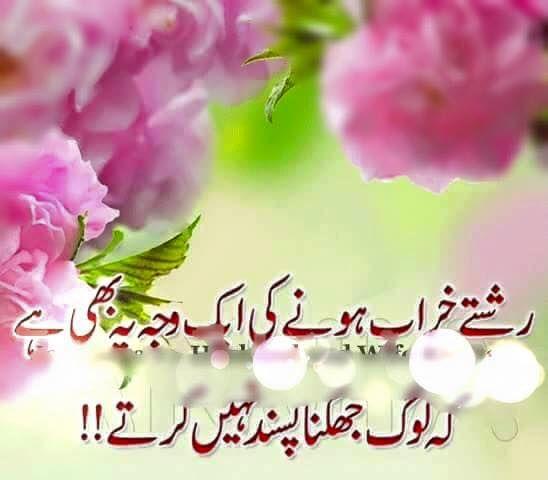 Warrior Life Meaning In Urdu: 139 Best Images About Quoets In Urdu No;2 On Pinterest