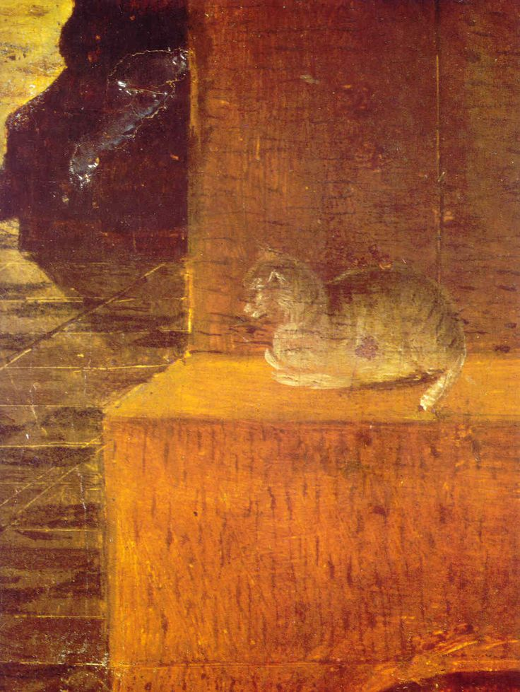"""Antonello da Messina (Italian, c. 1430 - 1479) - Detail of the cat from """"Saint Jerome in his Study"""", c. 1475 - The National Gallery, London"""
