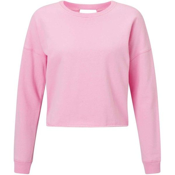 Miss Selfridge PETITE Lace Back Sweatshirt ($42) ❤ liked on Polyvore featuring tops, hoodies, sweatshirts, petite, pink, petite tops, miss selfridge tops, miss selfridge, pink sweatshirts and petite sweatshirts