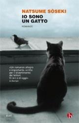 Io sono un gatto... In lettura