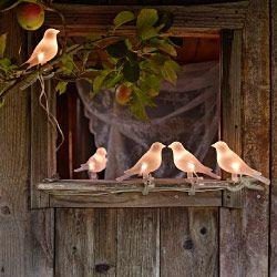 Guirlande d'oiseaux à énergie solaire installée dans un pommier