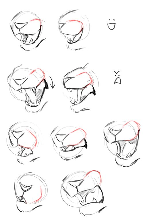 Muzzles by Finchwing on Tumblr animal reference