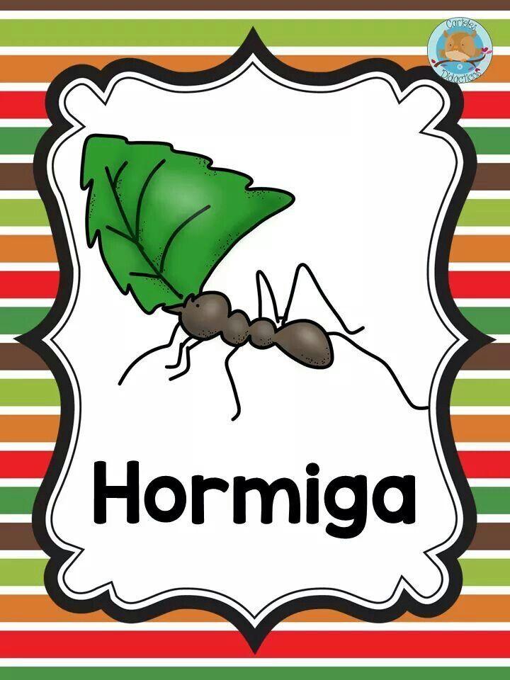Mejores 171 imágenes de HORMIGAS en Pinterest | Hormigas, Preescolar ...