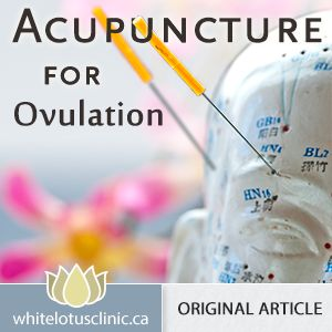 Acupuncture for ovulation disorders and PCOS. Repinned by www.academ.nl/ & www.medischeqigong.com #qigong #acupuncture #health