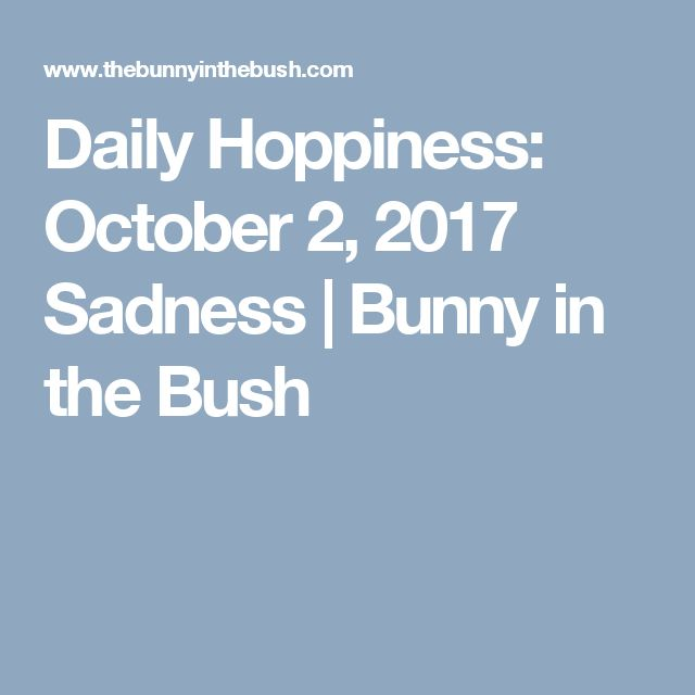 Daily Hoppiness: October 2, 2017 Sadness | Bunny in the Bush #happinessquotesforkids