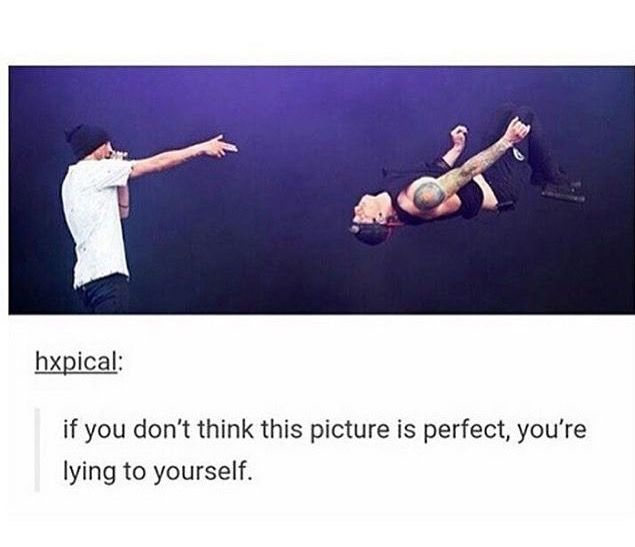 The iconic backflip << I've had the privilege of seeing them live and the backflip is better than I could ever expect