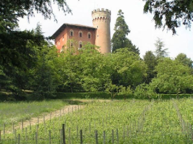 The only #castle currently for sale in #Piedmont that perfectly frames the hilly agricultural landscapes,
