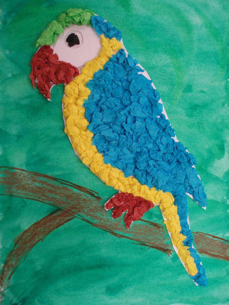 Míša, papoušek, jaro 2015
