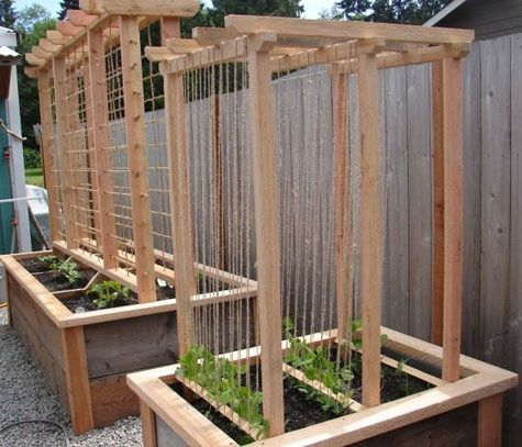 veggie box trellis  I really like the use of twine, because at the end of the season you can just remove it, no dealing with dead vines intertwined on wire mesh!  Can probably be composted too, win, win!