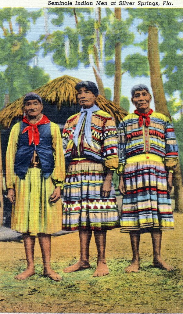 a history of seminole indians in florida Seminole history the seminoles of florida  performing traditional dance and music to share their history with non-indians creeks migrate to florida seminole.