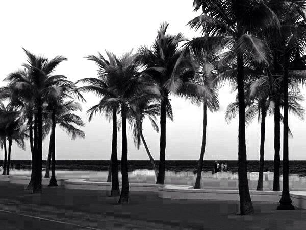 Fortlauderdale - Florida
