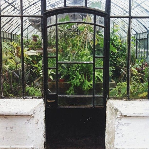 a post about the five antique greenhouses at the buenos aires botanical garden.