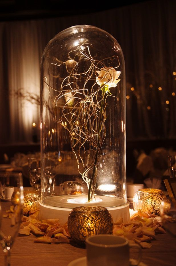"Enchanted rose ""beauty and the beast wedding on pinterest"