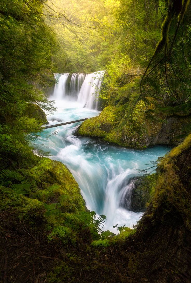 Best 25 Columbia River Gorge Ideas On Pinterest