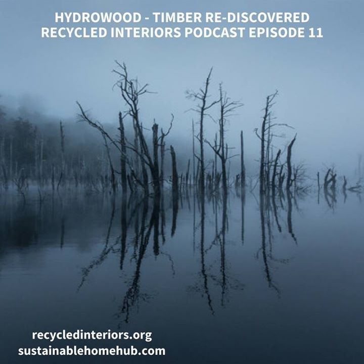 Recycled Interiors Podcast 011 Hydrowood - Rescuing Old Growth Forests http://ift.tt/2cK5rS4 You are going to love today's episode! I am chatting with Andrew from a business called Hydrowood.  In 2012 Andrew together with his long time business partner David Wise came up with the crazy idea of salvaging standing timber in the hydroelectric dams of Tasmania. From that point they embarked on one of the most ambitious forestry projects in Australia to ultimately end up with a highly innovative…