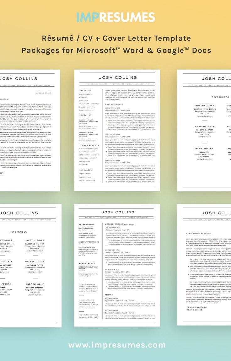 msword modern resume template