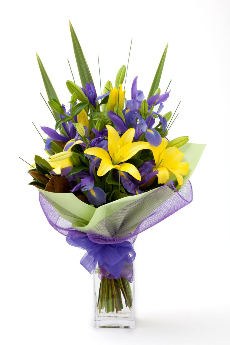 Purple and yellow, classic colour combination.