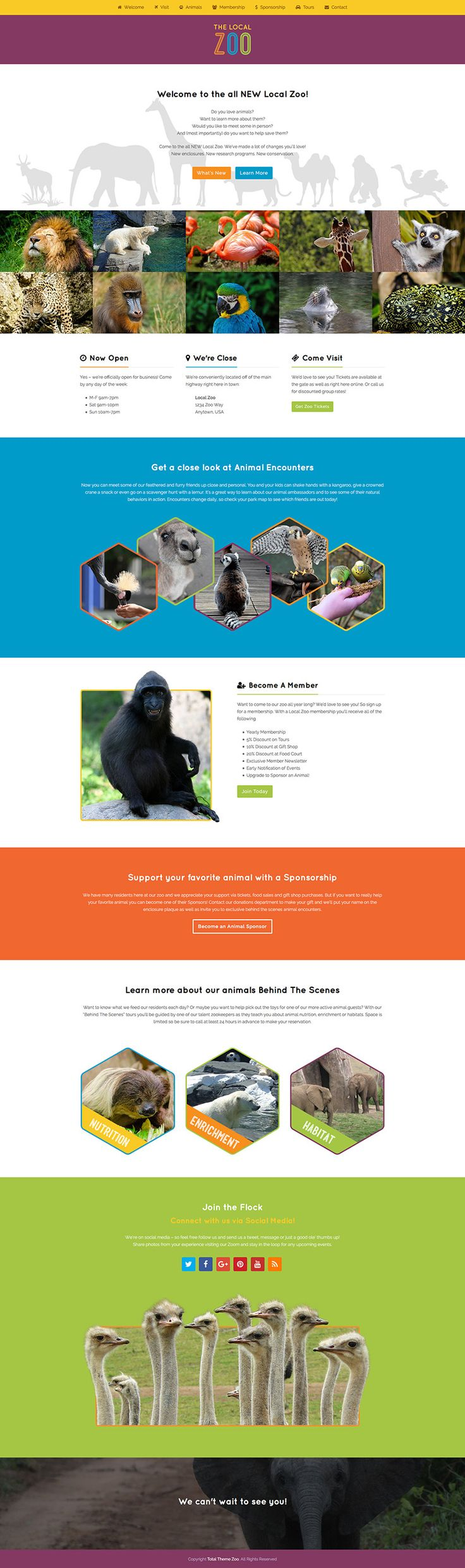 Zoo is a cheerful and colorful single page WordPress demo using the drag & drop Total WordPress theme.
