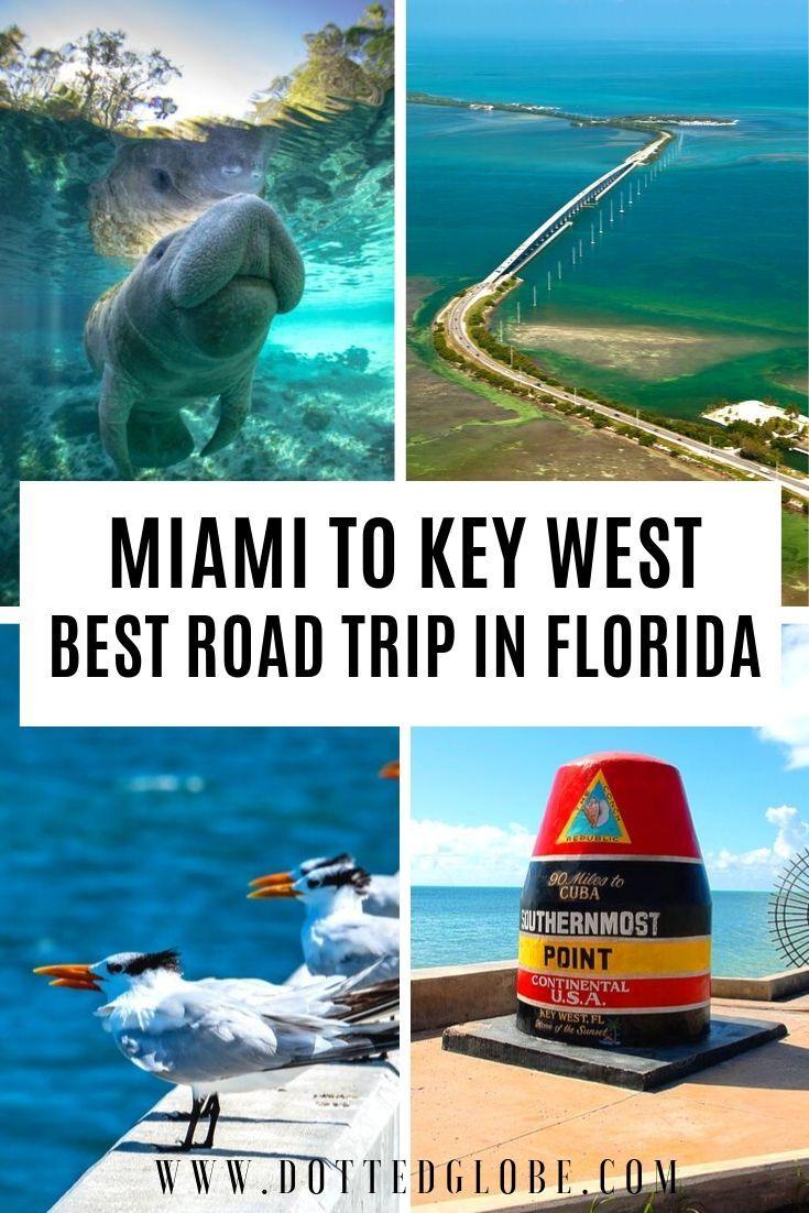 Miami To Key West Drive Guide 25 Essential Stops Florida Keys Road Trip Florida Travel Europe Travel Photos