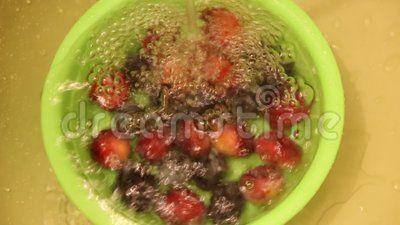 Washing plums - washing fresh plums in a bowl